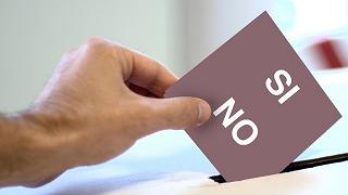 Perché sì, perché no: Roberto D'Alimonte, Valerio Onida