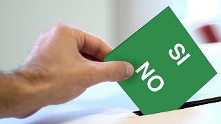 Perché sì, perché no: Stefano Ceccanti, Luca Antonini
