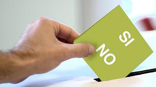 Perché sì, perché no: Stefano Pizzorno, Roberto Zaccaria