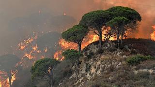 Vesuvio, arrestato autore incendio che ha distrutto 10mila mq di parco