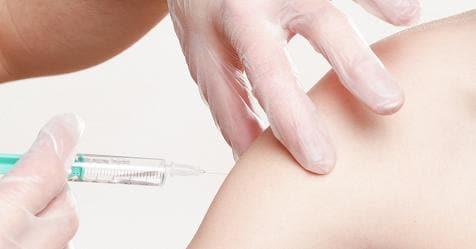 Vaccini, un emendamento della maggioranza conferma l'obbligo nelle scuole – Rai News