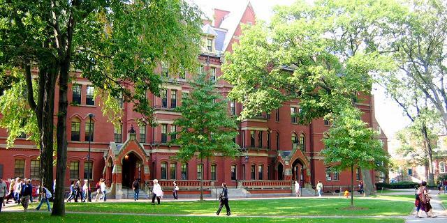 Harvard incontri
