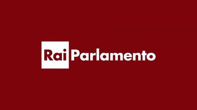 Rai 1 Parlamento Telegiornale