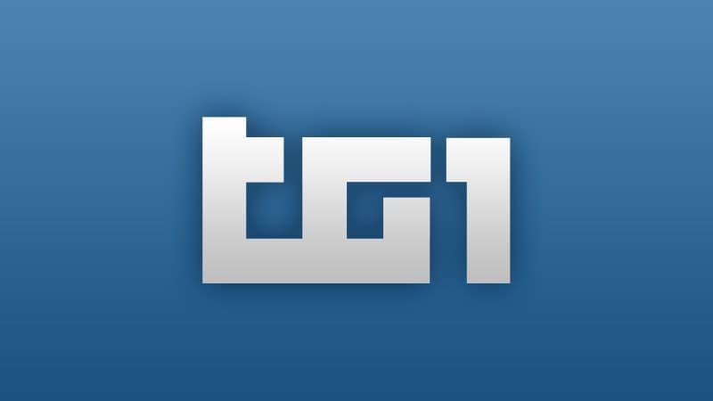 TG 1 L.I.S.
