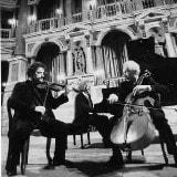 Trio Ciajkovskij