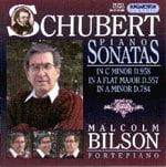 Domenica 18 luglio, per la Vetrina del Compact disc, è di scena il Fortepiano in Schubert.