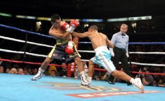 Rai sport pugilato boxe paglia ibf takayama nuovo - Allenamento pugilato a casa ...