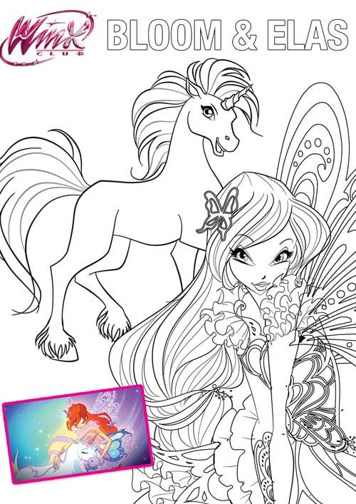 Winx Stars Kolorowankowo Winx I Zwierzaki