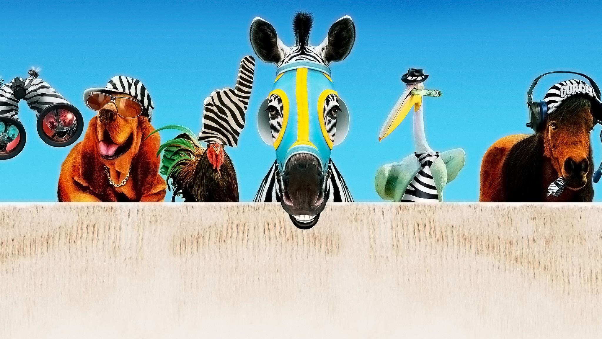 Rai Movie Striscia, una zebra alla riscossa