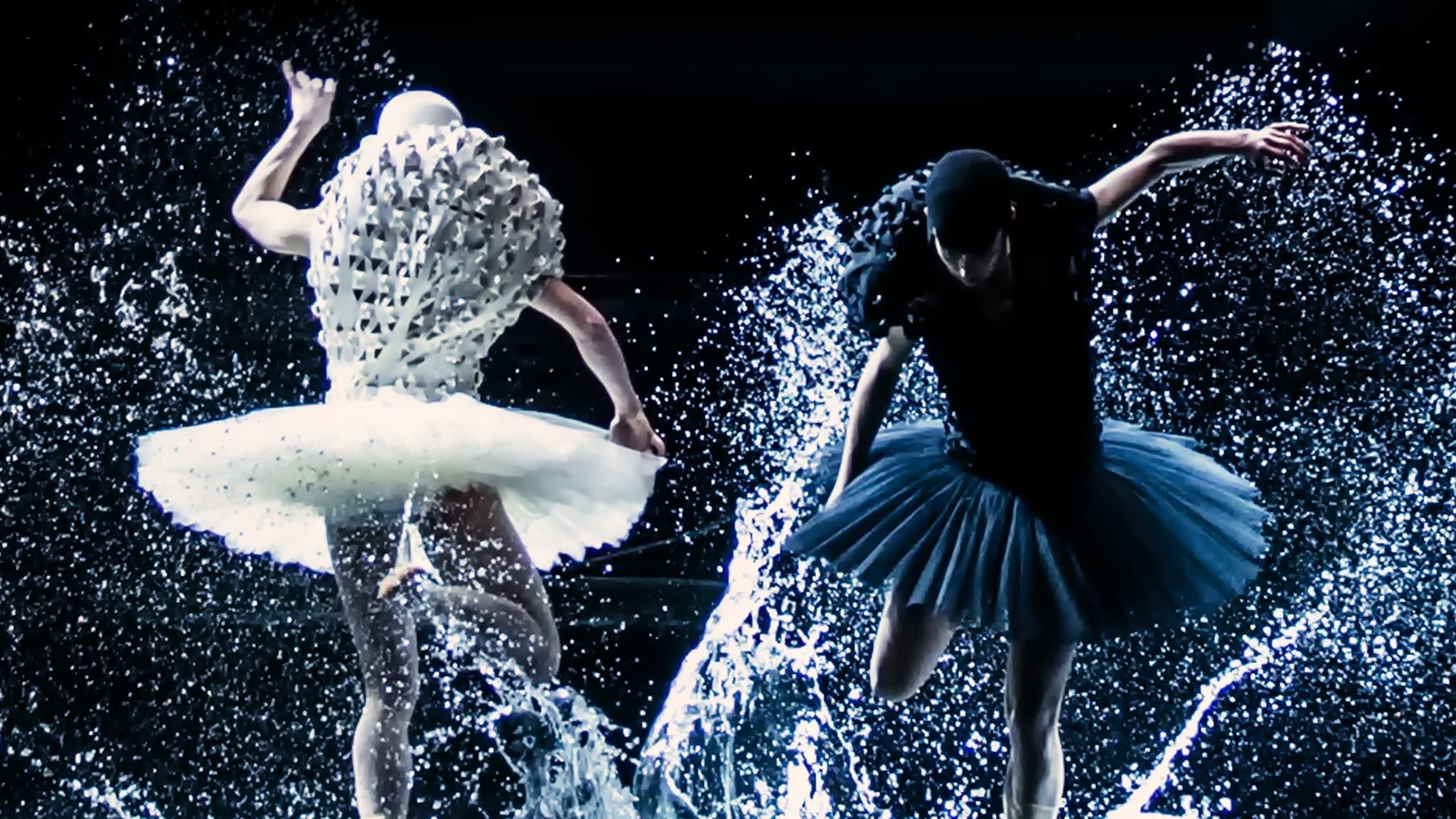 Rai 5 Balletto - A Swan Lake