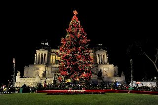 Albero Di Natale Roma.Spelacchio Is Back La Raggi Accende L Albero Di Natale A Roma Photogallery Rai News